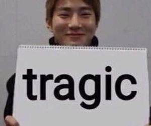 meme, exo, and kpop image