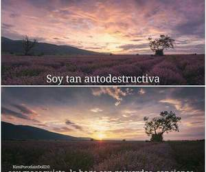 frases and masoquismo image