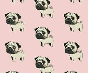 dog, pattern, and wallpaper image