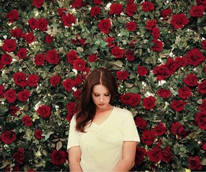 lana del rey, rose, and lana image