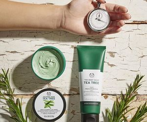 skin care, tea tree, and the body shop image