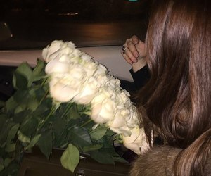 roses, flowers, and white image