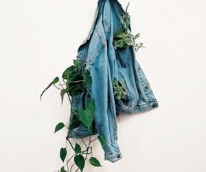 plants, jacket, and photography image