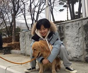 dog and lee joo young image