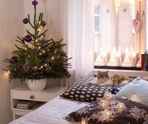 christmas, bedroom, and cat image