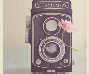 camera, vintage, and flowers image