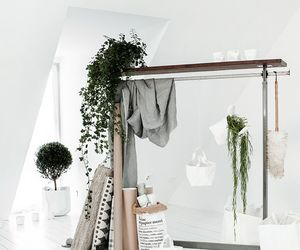 interior, plants, and style image