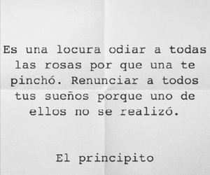 el principito, frases, and Dream image
