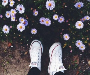 flowers, converse, and white image