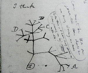 biology, life, and Letter image