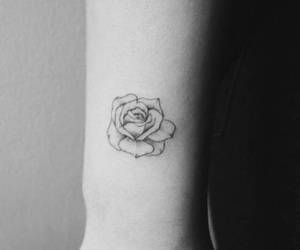blackandwhite, little, and rose image