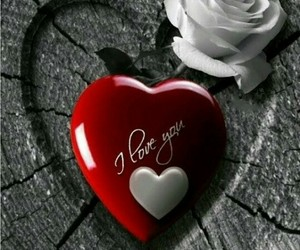 romantic picture image