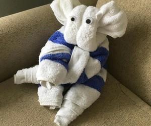 amazing, towel, and animals image