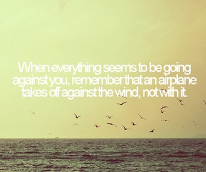 quote, airplane, and life image