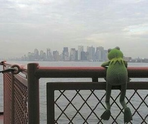 kermit and muppets image