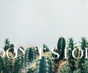 alternative, cactus, and garden image