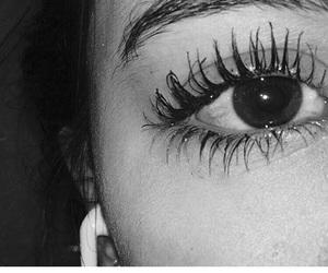 black and white, eyelashes, and eyes image