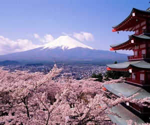japan, mountains, and sakura image