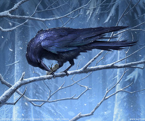 amazing, crows, and fantasy image