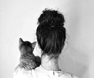 cat, girl, and hair image