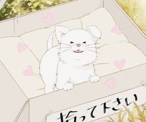 anime, kimi ni todoke, and dog image