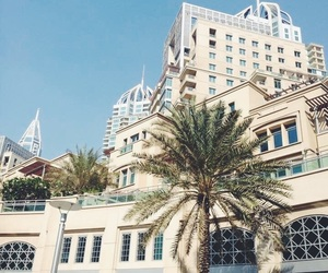 architecture, palms, and buildings image