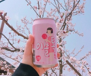pink, pastel, and drink image