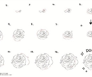 flowers, rose, and how to draw image