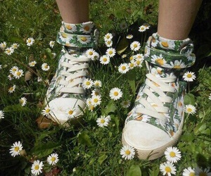 flowers, shoes, and green image