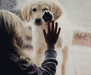 rain, sad, and love image