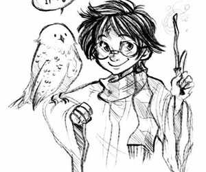harry potter, drawing, and hedwig image