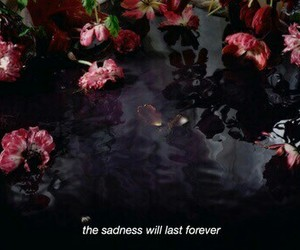 flowers, dark, and theme image