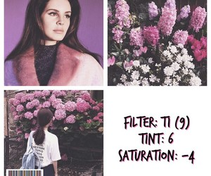 aesthetic, pastel, and vsco theme image