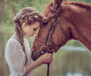 animals, horse, and horse love image