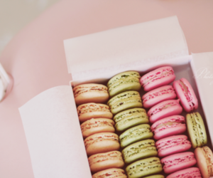macaroons and pastel image