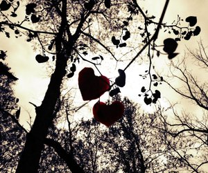 hearts, leaves, and nature image