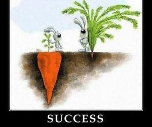 success, quotes, and carrot image