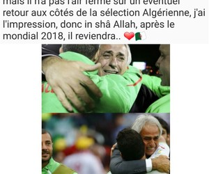 bravo, dz, and algerie image