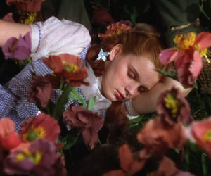 The wizard of OZ, dorothy, and theme image