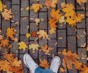 autumn, converse, and heart it image