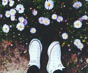 beautiful, converse, and flowers image