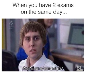 funny, exams, and fun image
