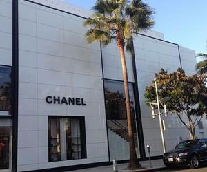chanel, beautiful, and fashion image