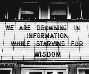 wisdom, information, and quotes image
