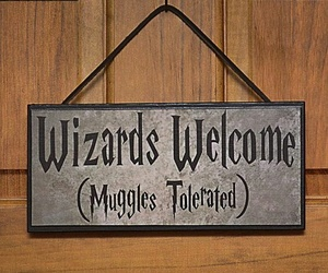 wizard, harry potter, and muggles image