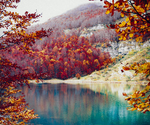 nature, autumn, and lake image
