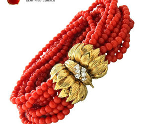 fashionable, luxury, and red coral bracelet image