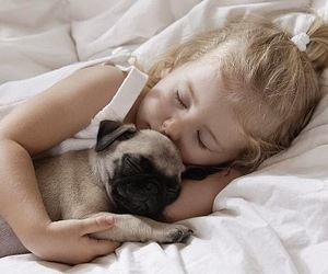 animals, lovelypets, and care image