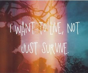 live, quote, and survive image
