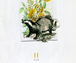 harry potter, hogwarts, and hufflepuff image